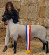 Champ Suffolk ewe sired by Mt Ronan 276-99
